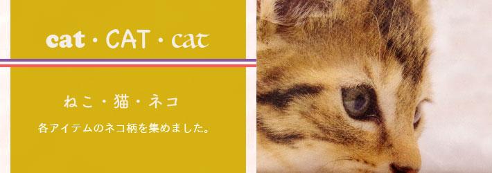ねこ・猫・ネコ